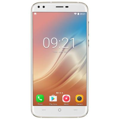 Мобильный телефон Doogee X30 Gold (6924351614607)