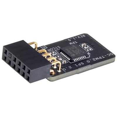 Контроллер GIGABYTE TPM-SPI 12-1pin SPI interface SLB9670 (GC-TPM2.0 SPI 2.0)