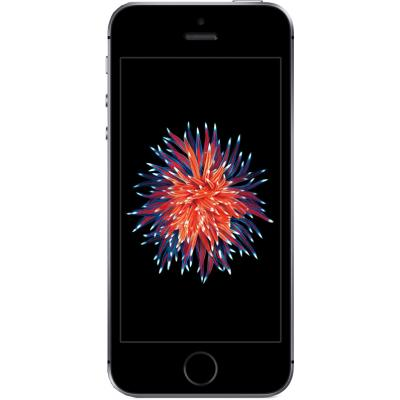 Мобильный телефон Apple iPhone SE 32Gb Space Grey (MP822UA/A)